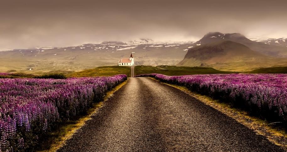 noclegi w reykjaviku